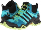 Terrex Swift R Mid GTX W Women's 8.5